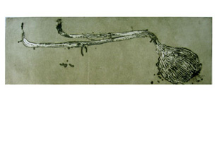 BARCELO : Untitled circa 90, etching