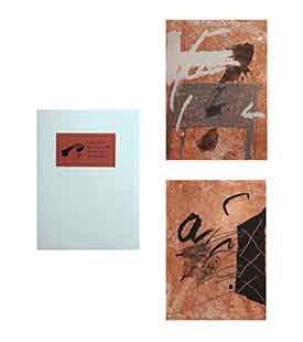 TAPIES : tapies-bois-book